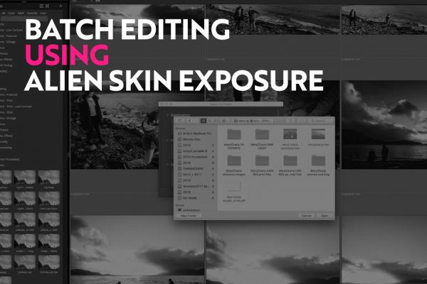 batch editing in alien skin exposure tutorial